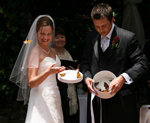 wedding live butterfly release