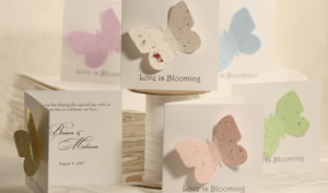 plantable butterfly and dragonfly favor seed favors for showers and weddings