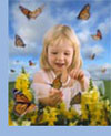 butterfly growing kit educational butterfly classroom monarch pupa chrysalis life cycle poster